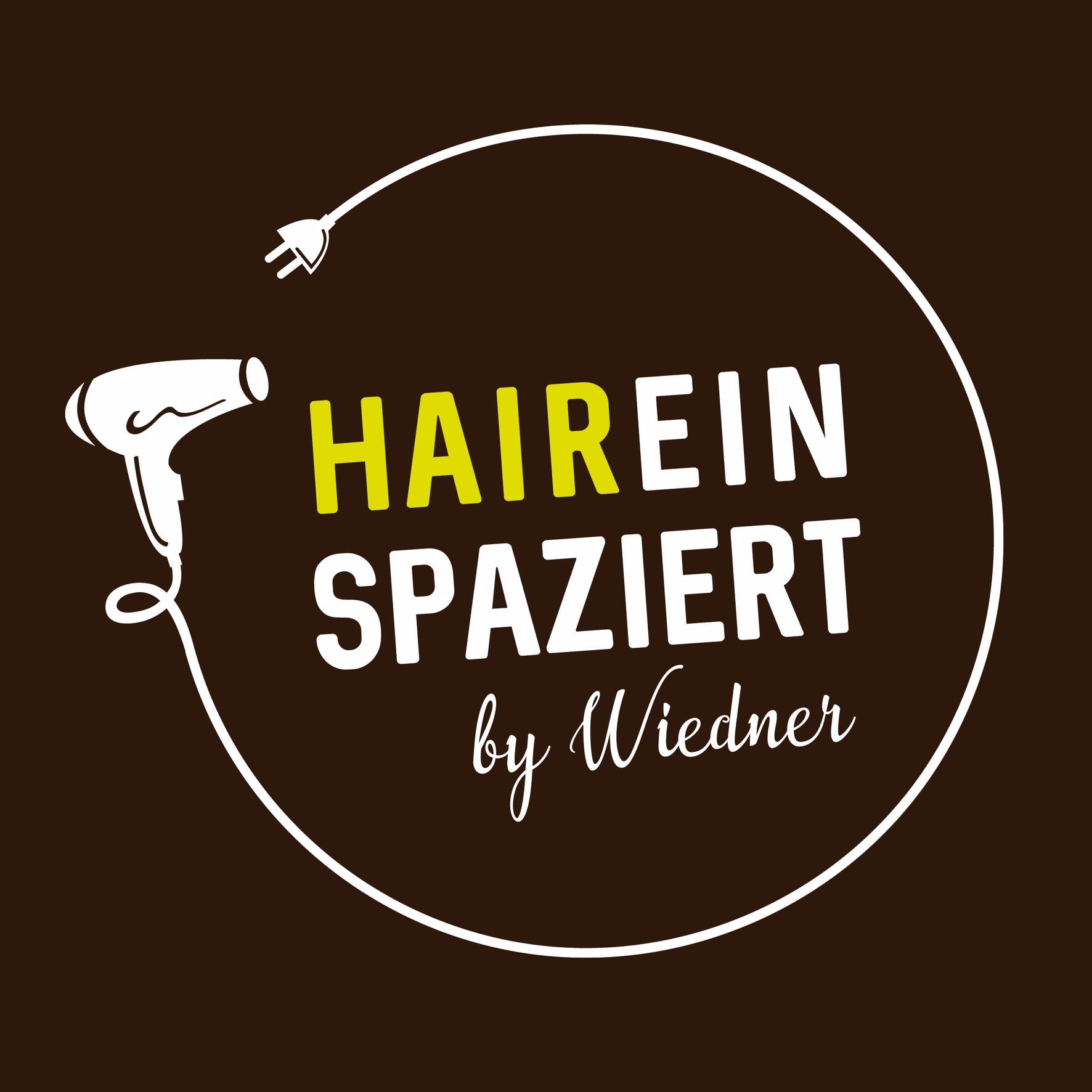 HAIReinspaziert by Wiedner Logo